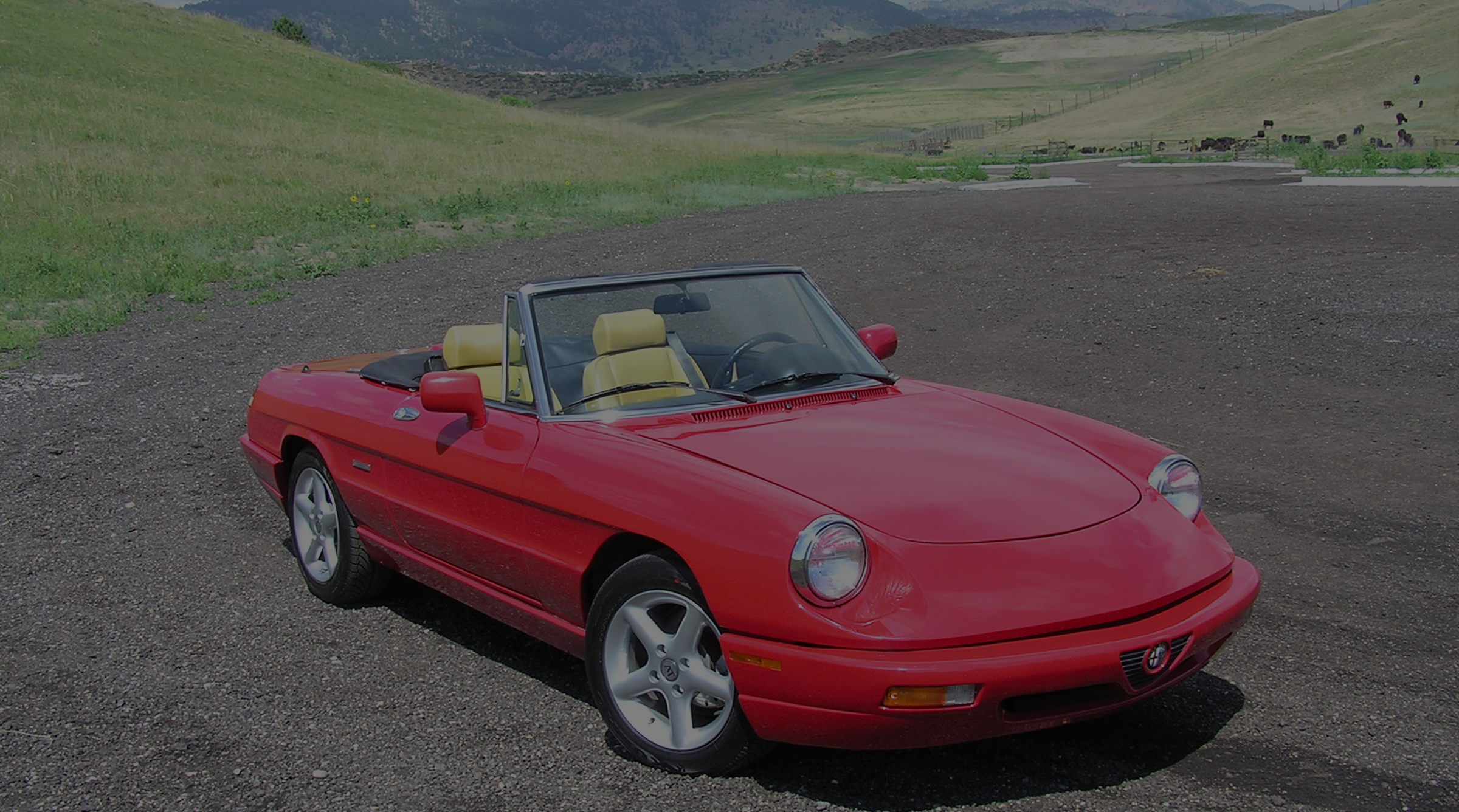 Alfa Romeo Spider Duetto Centerline International - 1994 alfa romeo spider